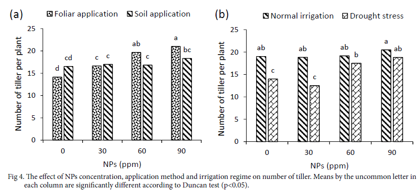 Evaluation of Chitosan Nanoparticles Effects on Yield and
